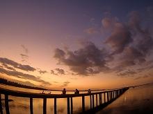 桟橋夕焼けを見るゲスト