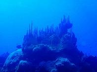 kosrae_diving1
